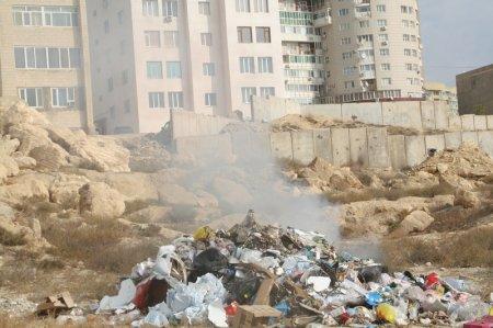 Кто город очищает, тот его и захламляет?