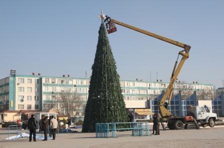 Новогодние елки в Актау установят с 10 по 15 декабря