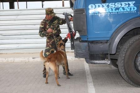 В Мангистауской области на границе с Узбекистаном пытались провезти марихуану