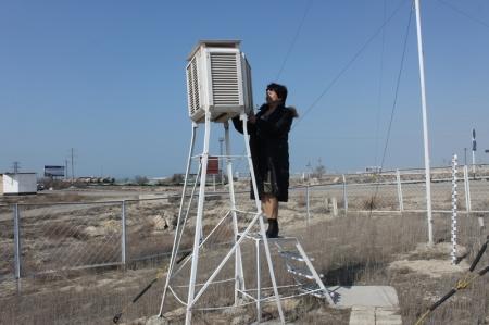 Психрометрическая будка. Здесь измеряют температуру воздуха и влажность