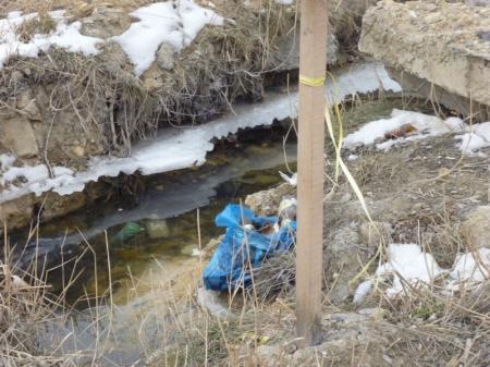 Экологическая катастрофа набережной первого микрорайона