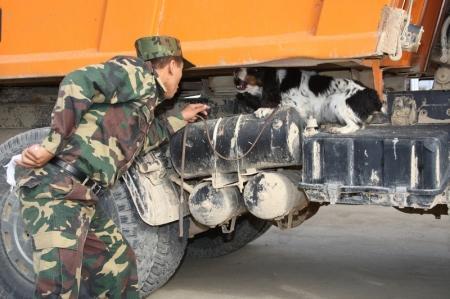 Прокуратура и таможня Мангистауской области прервали цепочку организованной контрабанды из Азербайджана