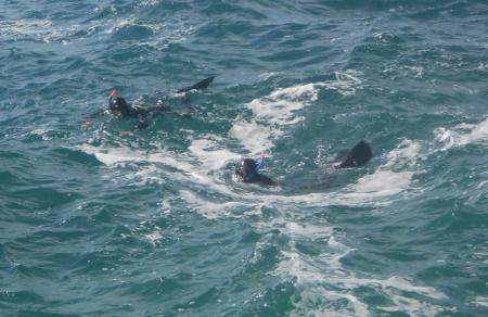 В Мангистауской области на побережье Каспия утонул гражданин России (ДОПОЛНЕНО)