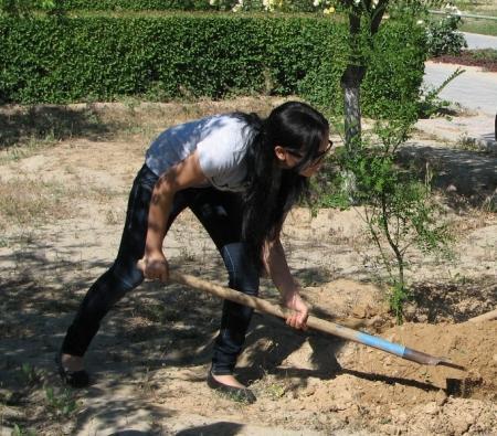 Озеленением и благоустройством городских территорий в Актау занимаются воспитанники трудового лагеря