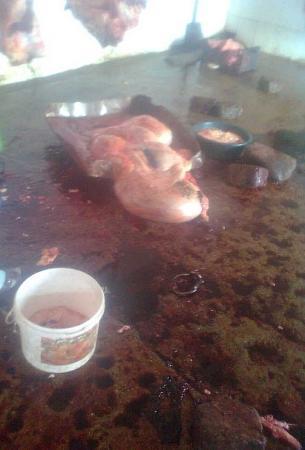 СЭС приостановила работу скотоубойного пункта Актау