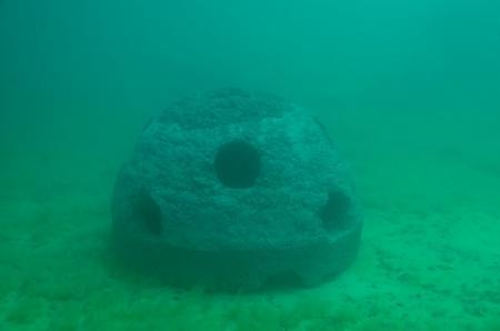 Рифов чтобы увеличить количество