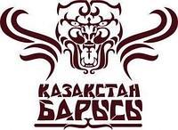 В Астане открывается турнир «Казахстан Барысы»