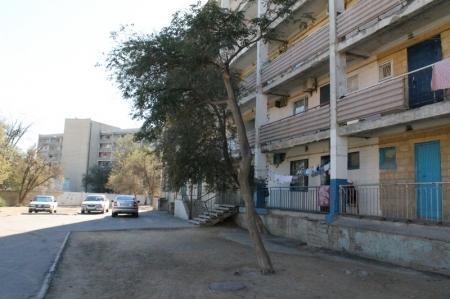 В Актау спилили деревья, за которые боролись жители 20 дома четвертого микрорайона
