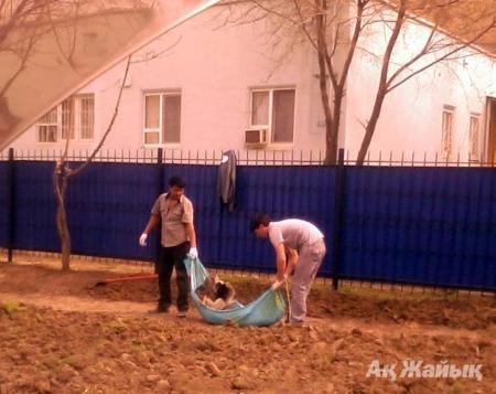 Житель Атырау оштрафован на 300 тысяч тенге за прикрепленный к авто флаг