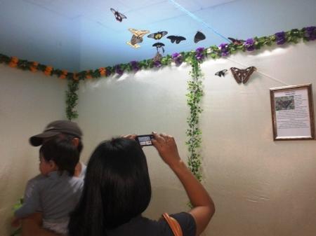 В Актау открылась выставка экзотических бабочек