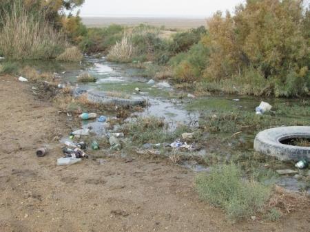 Во впадине Карагие прошла «Гонка за мусором!»