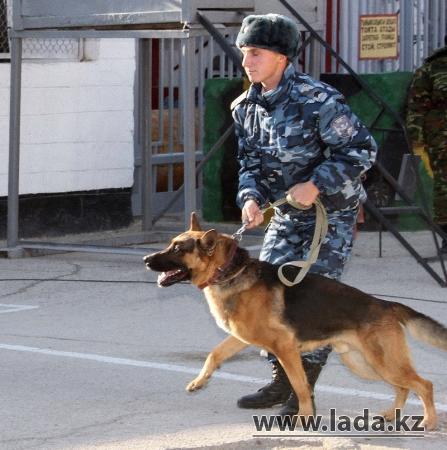 В Актау проходит акция, посвященная 20-летию Вооруженных сил Казахстана