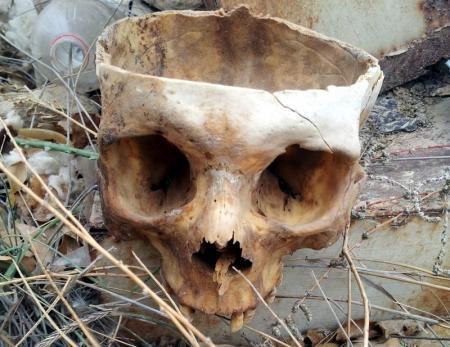 На христианском кладбище Актау обнаружен череп, лежащий на поверхности земли