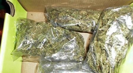 84 килограмма марихуаны изъято за один день в Актау