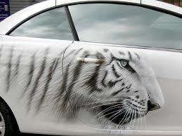 Житель Актау решил нанести на свой автомобиль изображение домашнего любимца и рекламу фирмы своей супруги
