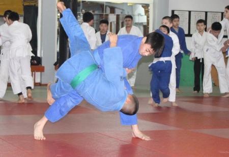 Дзюдо - искусство побеждать