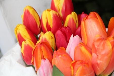 Женщины как букет цветов, а мужчины готовятся к празднику. Фотопост (ДОПОЛНЕНО)