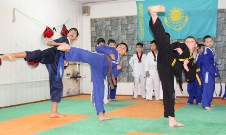 Таеквондо - путь кулака и ноги