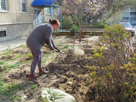 Уход за зелёными насаждениями внутри микрорайонов Актау может стать заботой самих жителей