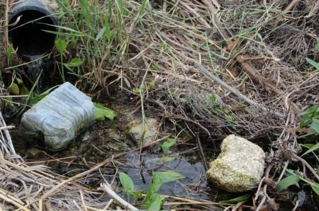 Аркадий Демидович: На побережье в 1 микрорайоне Актау в море стекают не канализационные, а грунтовые воды