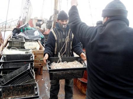 Генеральный прокурор РК озабочен ростом браконьерства на Каспии
