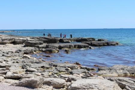 На побережье Каспия в 15 микрорайоне Актау обнаружен труп мужчины