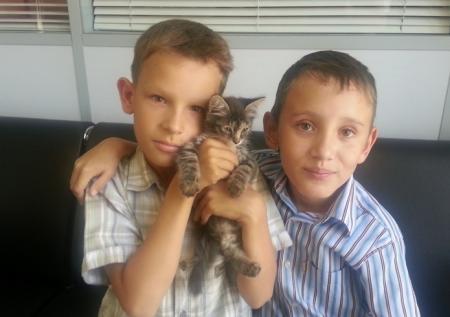 Ануар и Ярослав ищут доброго хозяина для брошенного котенка