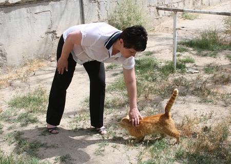 Жители Актау конфликтовали между собой из-за кошек