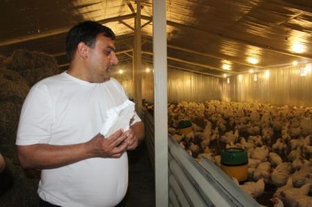 В Мангистауской области открылась птицеферма