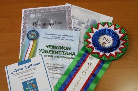 Три собаки из города Актау стали чемпионами на международной выставке «Asia Winner»