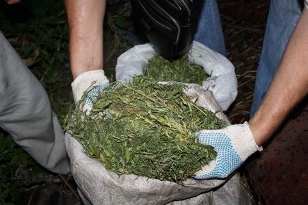 Почти 8 кг марихуаны везли в Мангистау в поезде «Алматы – Мангышлак»