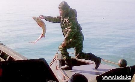 Асан Абдуллаев: Свыше пяти миллионов ущерба нанесли браконьеры в Мангистауской области