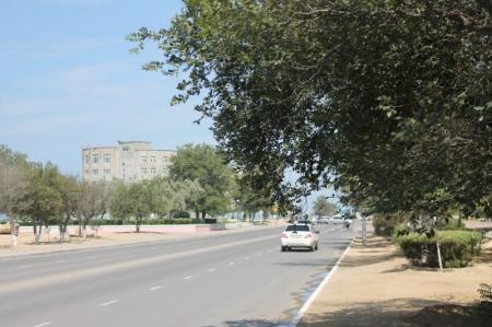 В Актау дорожные полицейские задержали мужчину, напавшего на проституток