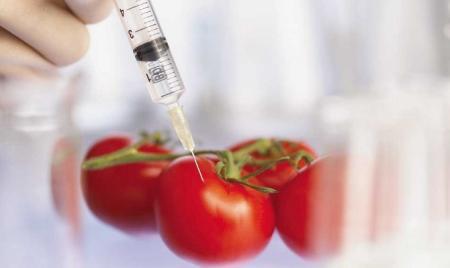 В Актау открылась лаборатория по исследованию продуктов на содержание ГМО