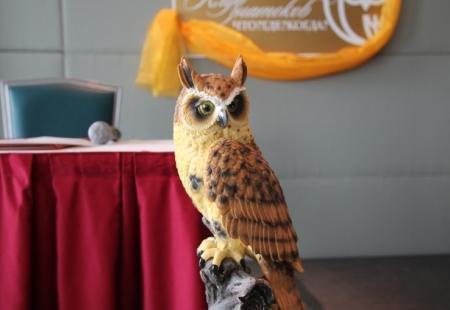 Международный фестиваль «Что? Где? Когда?» пройдет в Актау в начале ноября