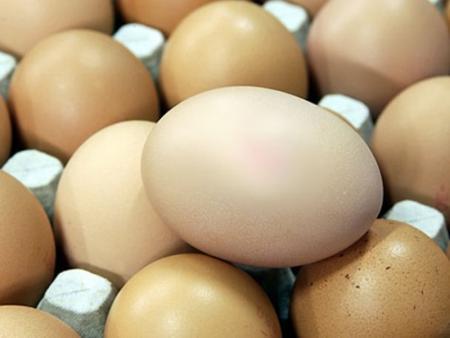 Бакыт Улыкбанов: Рассматриваются все варианты по стабилизации цен на яйца