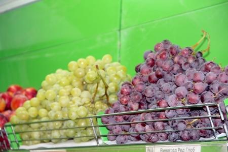 В Актау торжественно открылся новый павильон «Kaz Fruit сompany»
