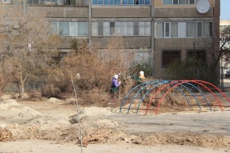 В трёх микрорайонах Актау начались работы по восстановлению зелёных насаждений