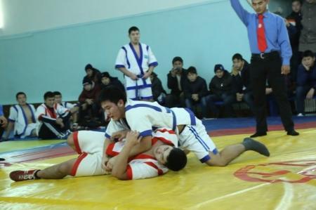 В Актау прошел чемпионат области по казакша курес