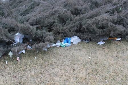 Сквер возле поликлиники Актау завалили мусором