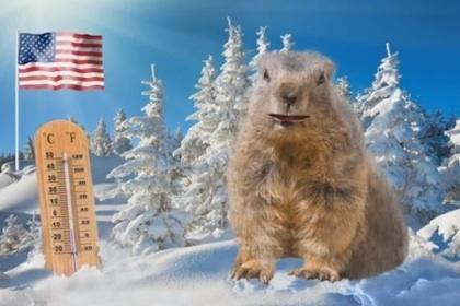 Электронный сурок предсказал раннюю весну в Казахстане