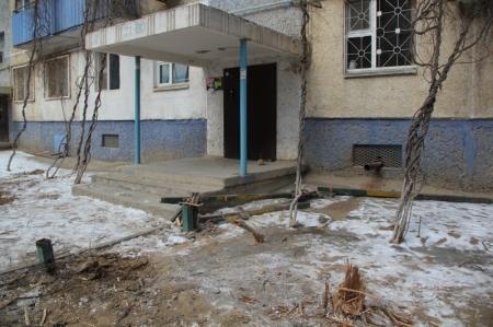 """Жители 9 дома 29 микрорайона жалуются на вырубку деревьев сотрудниками """"Каспий жылу, су арнасы"""""""