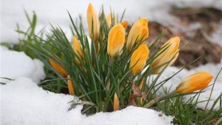 Четыре дополнительных дня отдыха получат казахстанцы, благодаря праздникам в марте