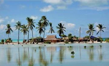 Путешественник предлагает обменять актаускую землю на тихоокеанский остров