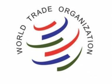 Президент РК выразил надежду на вступление в ВТО в этом году