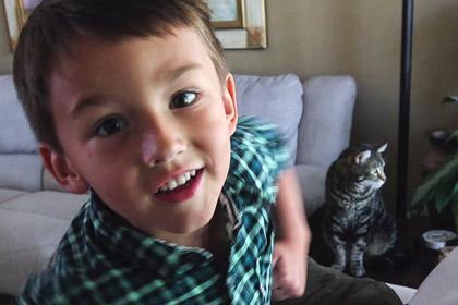 Спасшую ребенка кошку пригласили на бейсбол