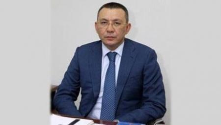Краткую форму декларации о доходах и имуществе будут сдавать 70% казахстанцев - минфин