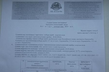 Жасулан Бектурганов: Информация о массовой гибели рыбы в местности Каражанбас была ложной