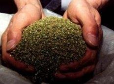 Житель Мунайлы прятал во фляге почти четыре килограмма марихуаны