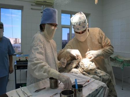Дина Утепбаева: Бесплатную медицинскую помощь иностранцы могут получить в случаях угрозы жизни больного